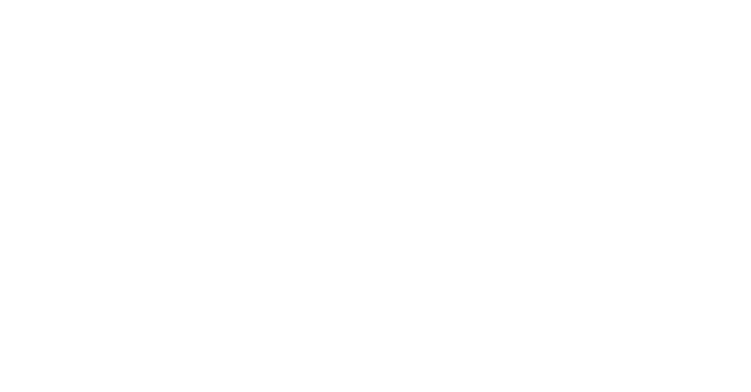 MARK LUI DESIGN WORKS